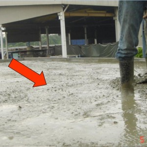 Pouring a Layer of Normal Concrete (50-75mmTHK)